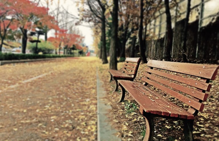 bench on campus